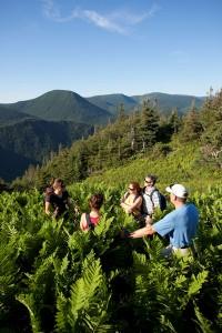 Guided hike at Chic-Chocs Mountain Lodge ©Mathieu Dupuis