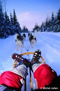 Traineau à chiens au Québec