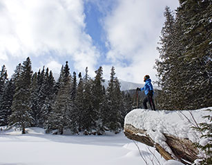 Snowshoeing, Skiing and Other Winter Sports