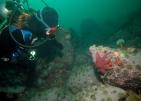 Centre de découverte du milieu marin