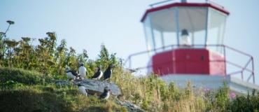 Celebrate Canada's 150th Anniversary  in the Maritime Regions of Québec!
