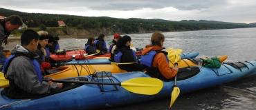 Kayaking and Seal Watching with Cap Aventure