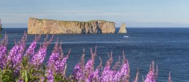 Le tour de la Gaspésie en 5 étapes - Étape 3 sur 5