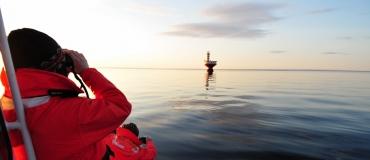 Explorez la vie marine au parc marin du Saguenay–Saint-Laurent