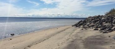 Parc Nature de Pointe-aux-Outardes: A Nature Park and Amazing Beaches!