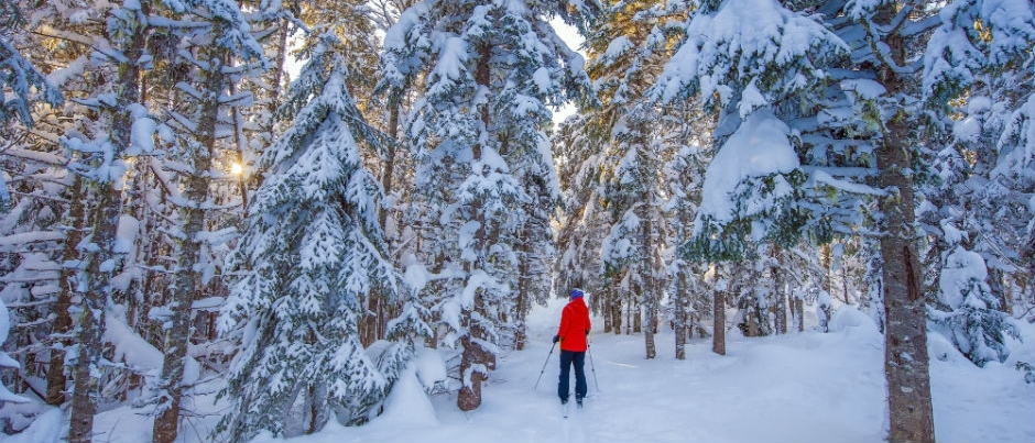 Winter in the Maritime Regions of Québec in Photos