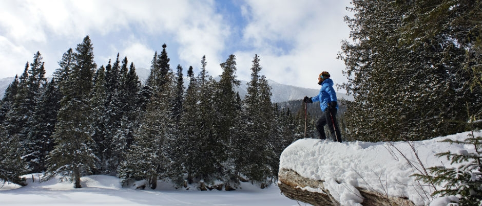 Winter Sports in the Maritime Regions of Québec: Snowshoeing, Cross-Country Skiing and Backcountry Skiing
