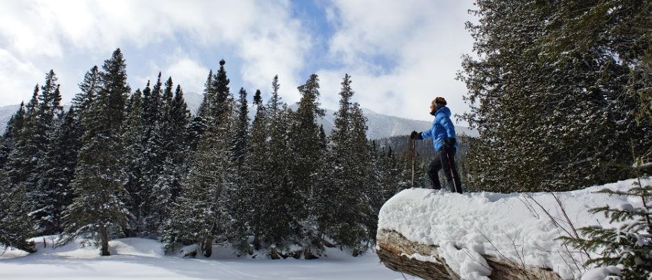 Les sports d'hiver au Québec maritime : La raquette, le ski de fond et le ski nordique