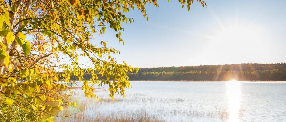 La saison des couleurs dans l'est du Québec : ouvrez grand les yeux!
