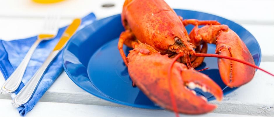 Saveurs régionales : Le homard