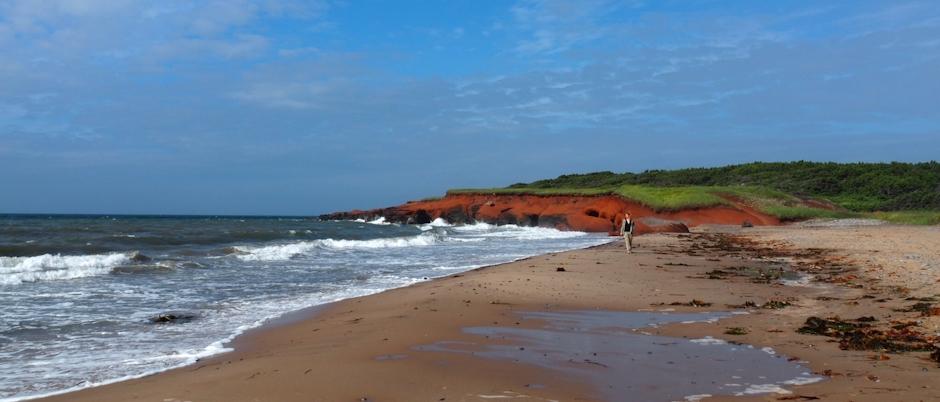 4 activités coups de cœur pour admirer de plus près la nature des Îles de la Madeleine!