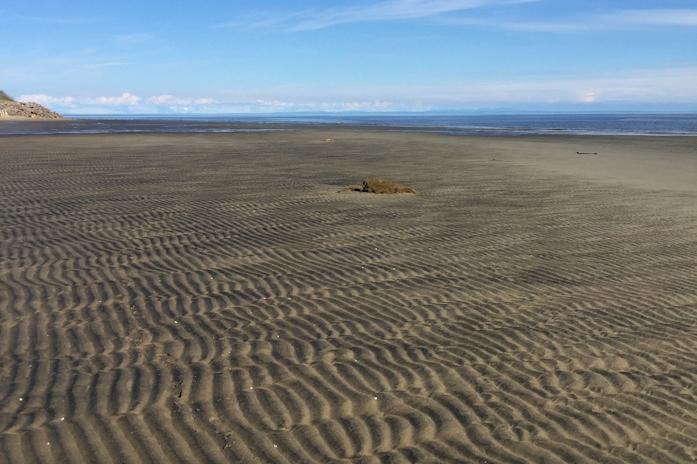 Battures de sable à perte de vue