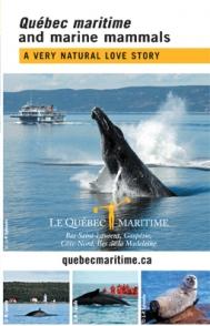 Marine Mammals brochure