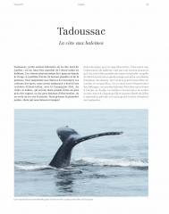 Tadoussac - La côte aux baleines